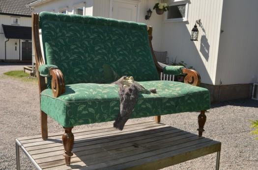 Sofa til lufting i sola!